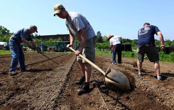 Volunteers working at the Pachamama Farm at Maryknoll, Ossining NY