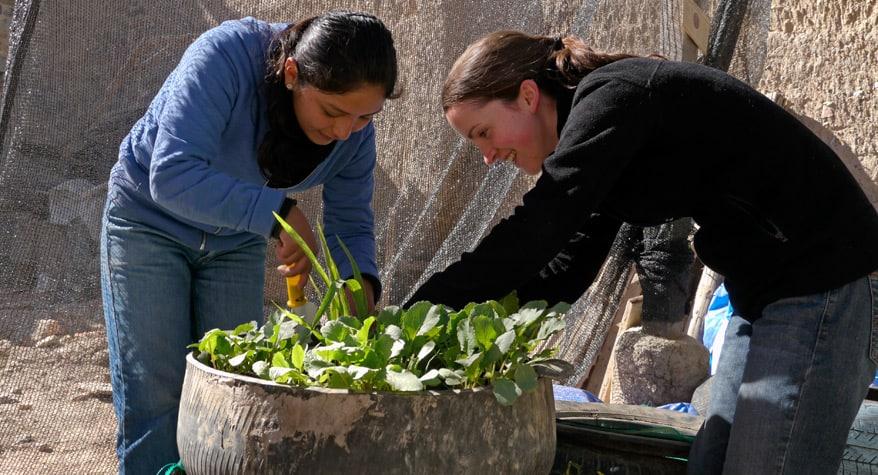 Cuidar de la Creación (Bolivia)