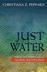 Just Water (Orbis Books)