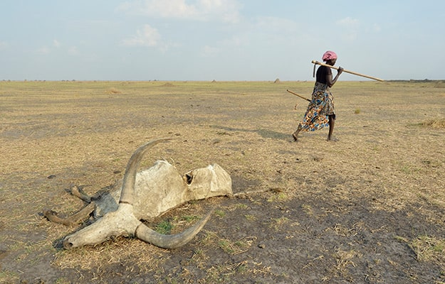 Drought in South Sudan